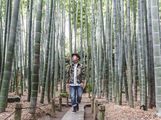 BASE-JAPAN-LANDSCAPE10