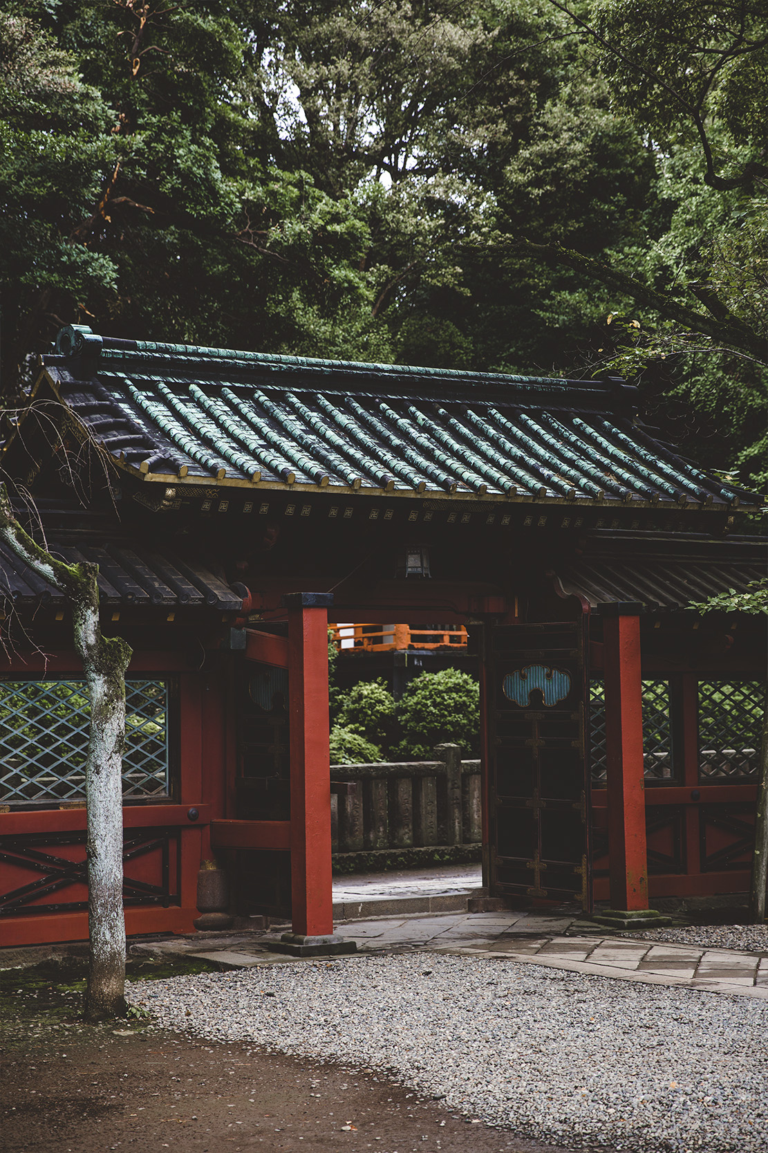 ANTLER - TOKYO - PORTRAIT14