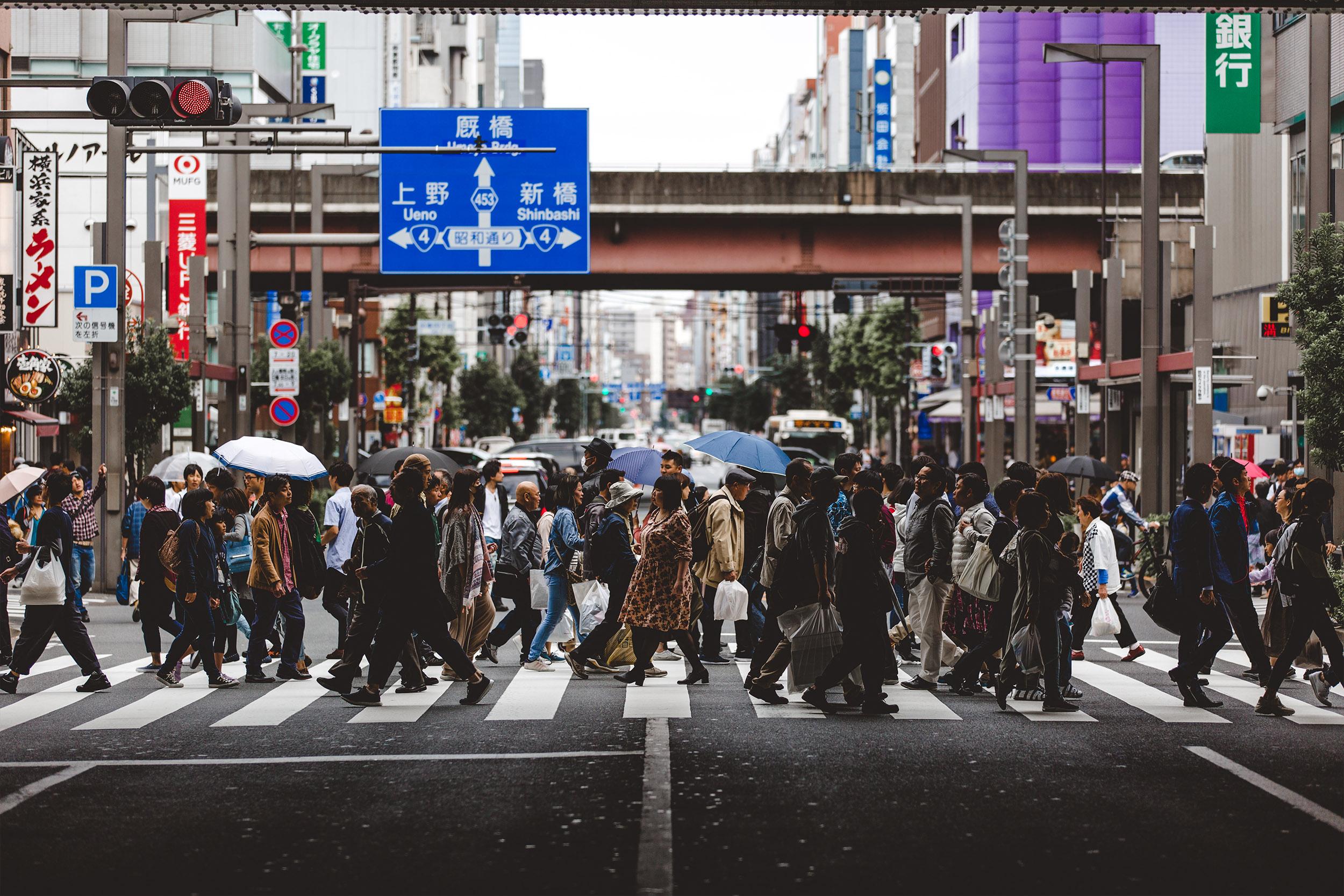 ANTLER - TOKYO7