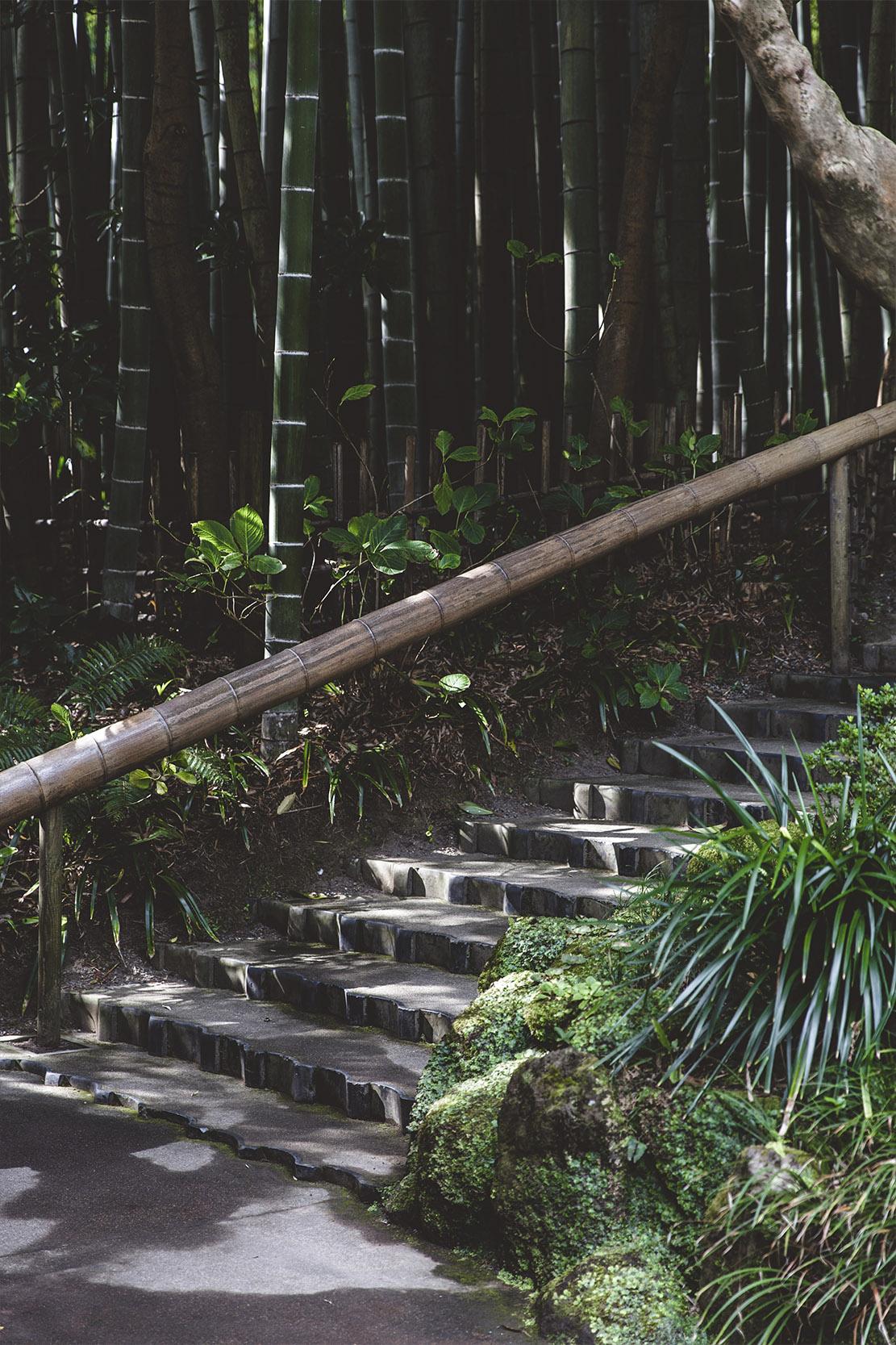BASE-JAPAN-PORTRAIT5